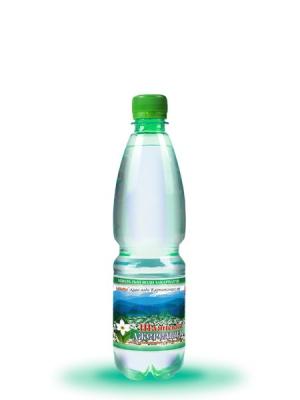Питна сильногазована вода Шаянська джерельна 0,5л