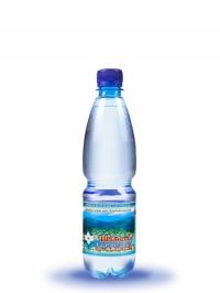 Питьевая негазированная вода Шаянская родниковая 0,5л