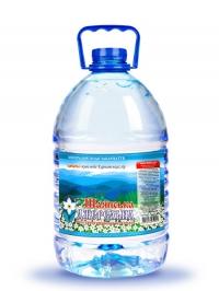 Питьевая негазированная вода Шаянская родниковая 5л