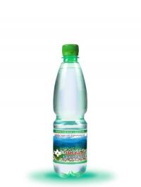 Питьевая сильногазированная вода Шаянская родниковая 0,5л